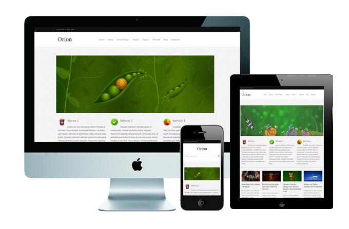 kostenlose-responsive-templates-wordpress-orion